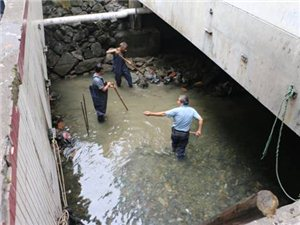 桃坑溪清淤