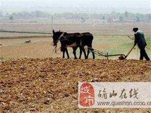 两办发文:农民进城落户不必退承包地