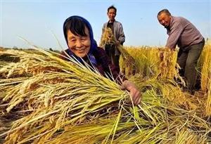 """继""""包产到户""""后,中国农村又一次迎来重大改革"""