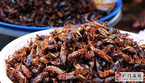 以前农村人常吃的十大野味排行榜,好几样现在花钱都不好买到了