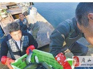 潘大库区售鱼忙