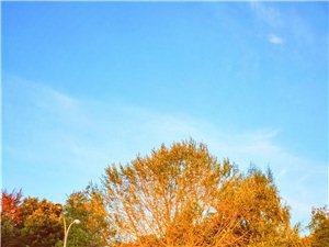 秋天再走慢点吧