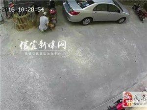 """信宜一偷鸡贼一分钟偷走5只""""三黄鸡""""被监控拍下"""