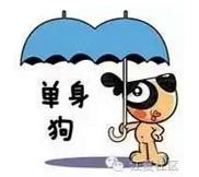 11月11日来江夏中百广场就为了相亲