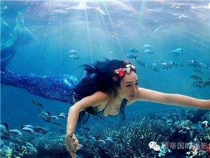 钟丽缇、张伦硕水下拍婚纱照,化身美人鱼演绎水中浪漫,激情满满辣眼睛
