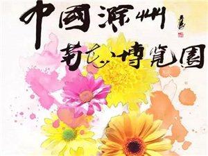 """大滁网""""初冬菊韵・魅力亭城""""随手拍采风活动开始啦!"""