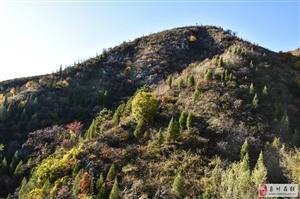 周末爬山,色彩斑斓的背后发现断崖矿坑石子场。
