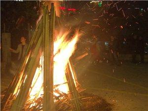 11·11甜甜果园篝火狂欢夜,精彩瞬间