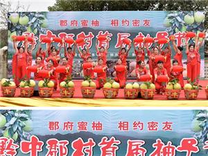 澳门金沙县太常乡黔中郡村举行首届柚子节
