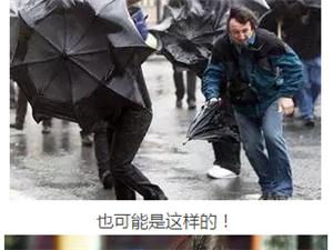 一场秋雨一场寒,漯河的朋友们一定要挺住呀要降雪了。