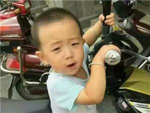 【�o急�U散】�と�!阜��板湖一小男孩走失!