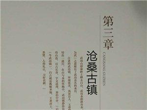 【图志连载】武功印迹第三章沧桑古镇 第一小节上半部