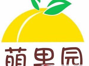 世界上最大的连片果园你见过吗?产出的这种水果卖疯了!
