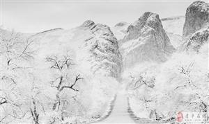 雪染的美景