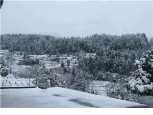秀山迎来2016冬季第一场雪,平阳盖被刷白啦!