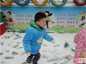 一场初雪,幼儿园的老师和孩子们都怎么了?!