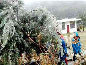融水县正式宣告进入寒冬季节啦