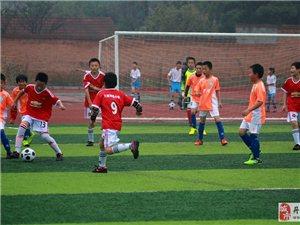 2016丹江口市中小学足球联赛670张图片分享