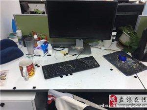 """黄鼠狼变""""办公室大盗"""" 为吃面包屑拆键盘(图)"""