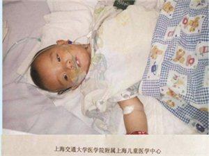 求助:一岁半小孩需终身手术,望各爱心人士帮帮他们!!!