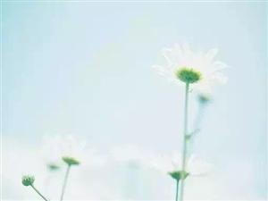 【原��小�f�B�d】《新人鬼情未了》第三十一章 �f�粢老�