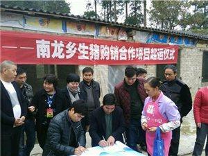 贵阳市委宣传部搭建精准扶贫连心桥助力开阳南龙乡实现产业脱贫