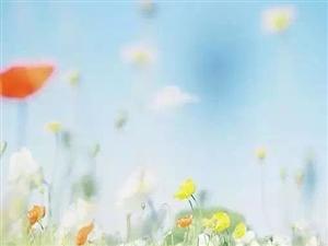 【原��小�f�B�d】《新人鬼情未了》第三十二章