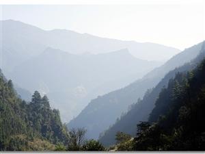 佛缘之旅,金佛山自驾游