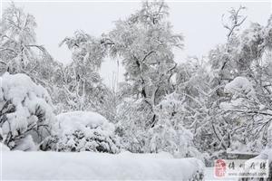 2016年12月雪谷徒步―30里羊草山―中国雪乡,雪乡实景摄影