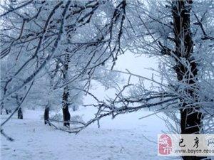 【巴彦网】二八歌户外营-12月17-18日魅力雾凇岛+龙潭山+长白野鸭