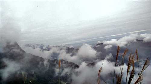 《风光江油》―江油观雾山