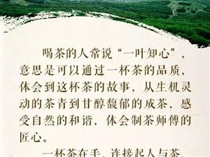 匠心红茶之旅(三)