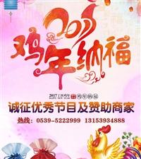 2017费县首届少儿网络春节联欢晚会