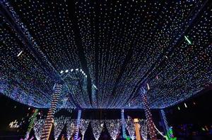 泸州首届炫彩灯光节盛大开幕