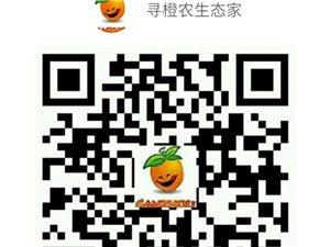 寻橙农生态家【微店新开全场7至8折、送100元现金2016年年终双盛惠