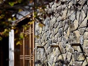 黄山驿境精品文化酒店:茶香缭绕的回春老宅,藏在古村中的江南园林