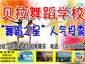 澳门太阳城网站县贝拉舞蹈艺术中心舞蹈之星人气投票