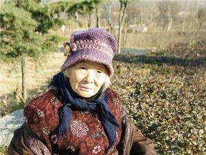 孤独的老奶奶