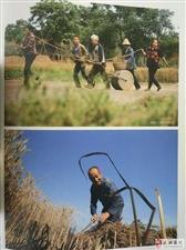 【图志连载】《武功印迹》第八章 民间农事 第一小节