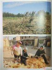 【图志连载】《武功印迹》第八章 民间农事 第2-4小节