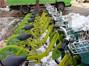 阜南公共自行车站点,快看这里...