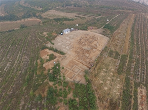 辽宁首次发现5000年前大型祭坛 罕见用驴祭祀