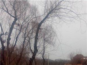 寂静的山村――――道虎沟