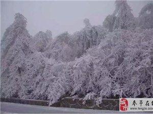 美爆了!昨天奉节这两个地方都下雪啦。。。