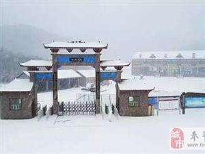 2017年奉节第一场雪,99%的人看到的是这样的美景