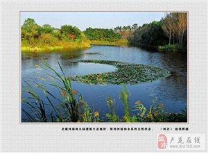 题图:鹧鸪天・戴河生态园