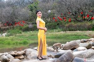 梅园旗袍秀