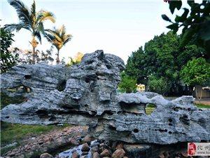 英德景观石场大量供应天然景观石、天然园林石、天然景观园林石