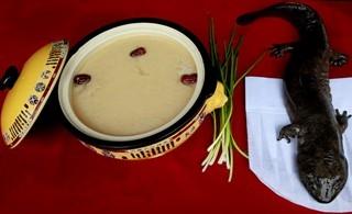 金土地农家乐特色菜