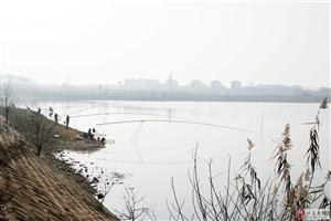 北咀新华农庄湖汊的短枪长炮